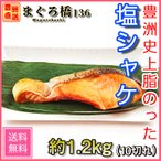 鮭 切り身 塩鮭 10切れ 1切れ120g 焼き魚 シャケ おいしい 業務用 豊洲直送 築地