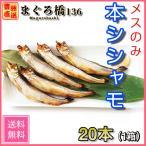 本柳葉魚 メスのみ 20尾 北海道産 本ししゃも ギフト 冷凍 本物 干物 焼き魚 豊洲直送 築地