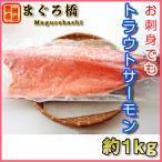 トラウトサーモン 約1.3kg お刺身用 フィレ 鮭 冷凍 豊洲直送 ギフト 築地