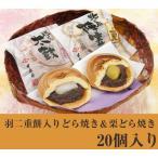 福井銘菓 和菓子スイーツギフト羽二重餅入りどら焼き&栗どら焼き20個入り 村中甘泉堂