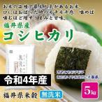 お米 米 5kg こしひかり 無洗米 福井県産 コシヒカリ 福井県米穀