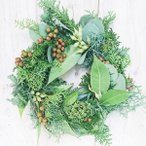 クリスマスリース 25cm フレッシュグリーン ナチュラル グリーン系 生木 アレンジメント