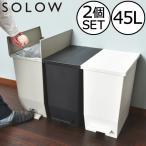 ゴミ箱  スリム おしゃれ キッチン 分別 約幅30cm 両開き フタ 45L 45Lリットル 日本製 カウンター下 収納 ( SOLOWペダルオープンツイン 45L 2個セット)
