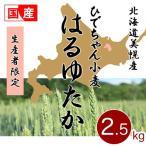 強力粉 ひでちゃん小麦 はるゆたか100 北海道美幌産限定 パン用小麦粉 2.5kg 国産小麦 new