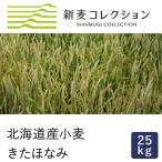 薄力粉 新麦コレクション  きたほなみ100 江別製粉 25kg 季節限定 new
