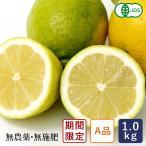 其它 - レモン 有機JAS 有機レモン(A品) 中原観光農園 1kg 国産 2017年12月15日am7:59受付、12月22日出荷 季節限定