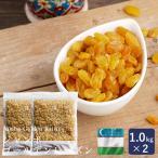 ウズベキスタン産 ジャンボゴールデンレーズン 1kg×2(2kg) ドライフルーツ 干しぶどう ノンオイル
