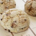 冷凍パン生地 KOBEYA Sチョコメロンパン17 1ケース 発酵不要 108g×32