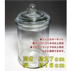 【宝石蘭・育成】Lサイズグラスボトル(標本瓶タイプ)