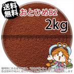 おとひめB2 (沈降性)2kg/メダカのごはん・稚魚の餌・グッピーのエサ(1金魚小屋-希-福岡)