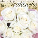 バラの花束 【大輪アバランチェ】(白バラ) 年齢の数で贈れる 誕生日ギフトや記念日ギフトに 母の日 女性 バラ 花束 プレゼント プロポーズ