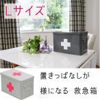 救急箱 薬箱 クスリ箱 くすり箱 かわいい おしゃれ 救急セット きゅうきゅうばこ オリジナル Lメディスンボックス  WH/PK (D)