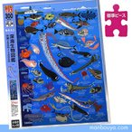 深海魚 図鑑 グッズ ジグソーパズル アポロ社 深海生物図鑑 水深200m〜1000m 300ピース  まんぼう屋ドットコム