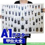 昆虫 グッズ アートポスター インテリア 雑貨 特大 A1サイズ 図鑑タイプ 実物大 甲虫大全 ポスター