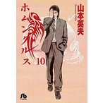 「【新品】ホムンクルス [文庫版] (1-10巻 最新刊) 全巻セット」の画像
