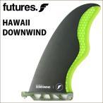 日本正規品 スタンドアップパドルボード用 FUTURE FIN フューチャー フィン HAWAII DOWNWIND