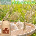 米 30kg コシヒカリ 玄米 お米 2年産 茨城県産 送料無料  『令和2年茨城県産コシヒカリ玄米30kg』