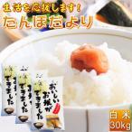 新米入 30kg お米 白米 安い (10kg×3袋) 訳あり ブレンド米 国内産 送料無料  『たんぼだより(白米10kg×3)』