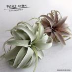 観葉植物 造花 キセログラフィカM エアプランツ おしゃれなフェイクグリーン インテリアグリーン  造花 キセロ インテリア雑貨