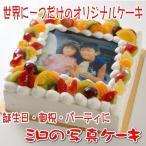 世界に一つだけのオリジナル写真ケーキ DXサイズ(28cm×28cm) 18〜28人用 (生クリーム・生チョコレート)