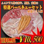 肉 牛肉 豚肉 鶏肉 焼肉セット 盛り バーベキュー bbq 国産 和牛 特選5人前 1.75kg 肉の山田屋 商番820