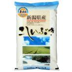 新米 無洗米5kg こしいぶき 新潟県産 無洗米 北陸 越後の米 平成29年産