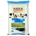 こしいぶき 米5kg 新潟県産 北陸 越後の米 令和元年産