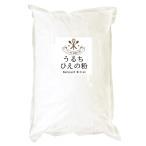 うるち ひえの粉 (インド産) 500g ベーカリー用雑穀 (投函便)