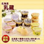 ショッピングアイスクリーム 送料無料 ギフト 北海道乳蔵アイスクリーム プレミアムバニラ入