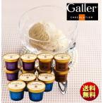 ショッピングアイスクリーム 送料無料 ギフト ガレー プレミアムアイスクリームセット GL-EG12