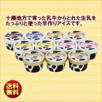 ショッピングアイスクリーム お中元 送料無料 夏ギフト 十勝白い牧場アイスクリームコレクション TSBK-11
