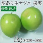 沖縄県産 特別栽培 果実 ナツメ なつめ 1kg(8個〜20個) フルーツ スーパーフード スーパーフルーツ