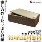 【送料無料】[天然]い草畳ユニット [ロータイプ・幅120cm・ブラウン ] 幅120cm×奥行60cm×高さ31.5cm