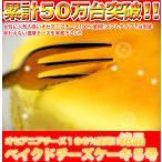 絶品ベイクドチーズケーキ5号≪冷凍便≫