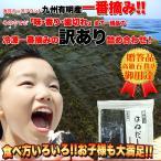 冷凍一番摘み☆有明海産はねだし海苔(全型30枚)