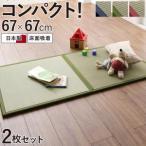 出し入れ簡単 床面吸着 軽量ユニット畳 Hanabishi ハナビシ 2枚セット
