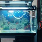 MEWTOGO-水温・湿度計両用 水槽水温度管理用 爬虫・両生類用 熱帯魚用 1台で3役 海淡水兼用 多機能 室内温度+水槽水温度+室内湿度