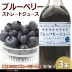 ブルーベリージュース 500ml 3本 100%ブルーベリー果汁 ストレート 国産 高山ガーデン