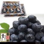 ブルーベリー 1.2kg 100g12パック 国産 エコえひめゴールド認証 有機栽培 地域限定送料無料