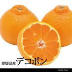 デコポン 秀 L  5kg 小玉 約24玉  愛媛 三崎 贈答用 みかん 柑橘 一部地域送料無料