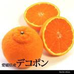 デコポン 優 2L 5kg 小玉 約20玉 愛媛 三崎 贈答用 家庭用 みかん 柑橘 一部地域送料無料