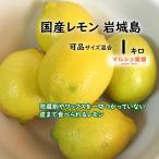 レモン 可品 1kg サイズ混合 家庭用 国産 愛媛 瀬戸内 産地直送