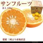 サンフルーツ 良品 L 10kg 新甘夏 愛媛 三崎 西宇和 あまなつのような苦味と酸味 一部地域送料無料