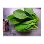 静岡産 ミニチンゲンサイ(青梗菜) 1パック