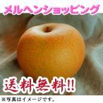 新興梨  5kg (9〜12玉入)