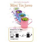 【栽培キット】ミニティンジョウロ(4種類セット)