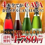 スパークリングワイン CAVA 4本セット