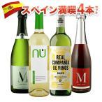 ワインセット 12本セット 赤ワイン 白ワイン スパークリングワイン  スペイン満喫12本セット