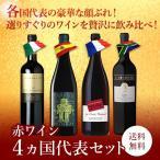 赤ワインセット 4カ国代表ワインセット 600種の中から当店おすすめの希少な赤ワインだけを厳選