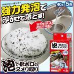 排水口 洗浄剤 ヌメリとり キッチン 洗剤 40g×5包